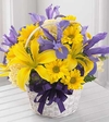 Spirit of Spring� Basket Get Well