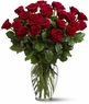 Two Dozen Red Roses Just Becasuse
