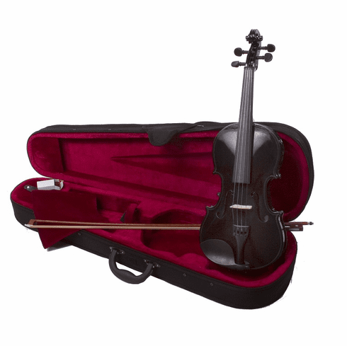 Full Size 4/4 Black Violin Fiddle With Case And Bow