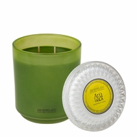Arugula 2 Wick Glass Hostess Candle by Archipelago