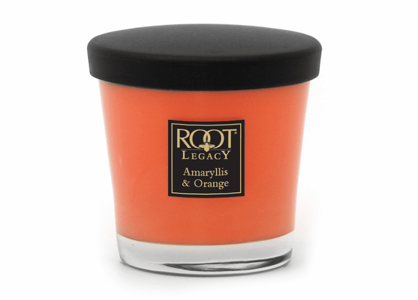 _DISCONTINUED - Amaryllis and Orange Small Veriglass Candle by Root