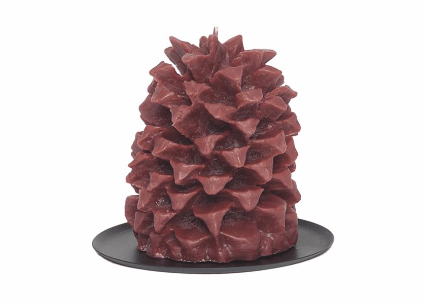 _DISCONTINUED - Amber Woods Pineapple Pinecone Candle by Aspen Bay Candles
