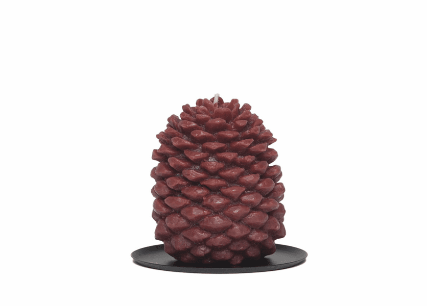 _DISCONTINUED - Amber Woods Tin Roof Pinecone Candle by Aspen Bay Candles