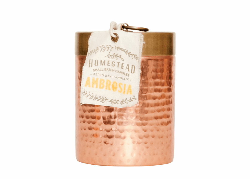 _DISCONTINUED - Ambrosia 14 oz. Hammered Canister Candle  by Aspen Bay Candles