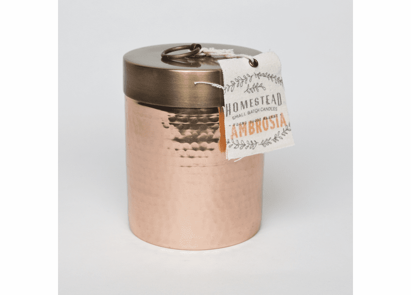 _DISCONTINUED - Ambrosia 14 oz. Hammered Canister - Fairfax & King