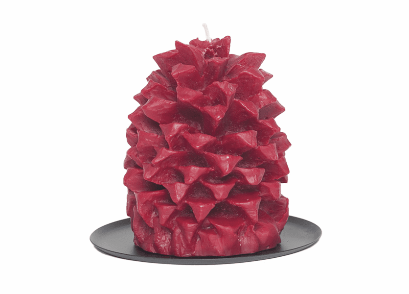 _DISCONTINUED - Apples N Spice Pineapple Pinecone Candle by Aspen Bay Candles
