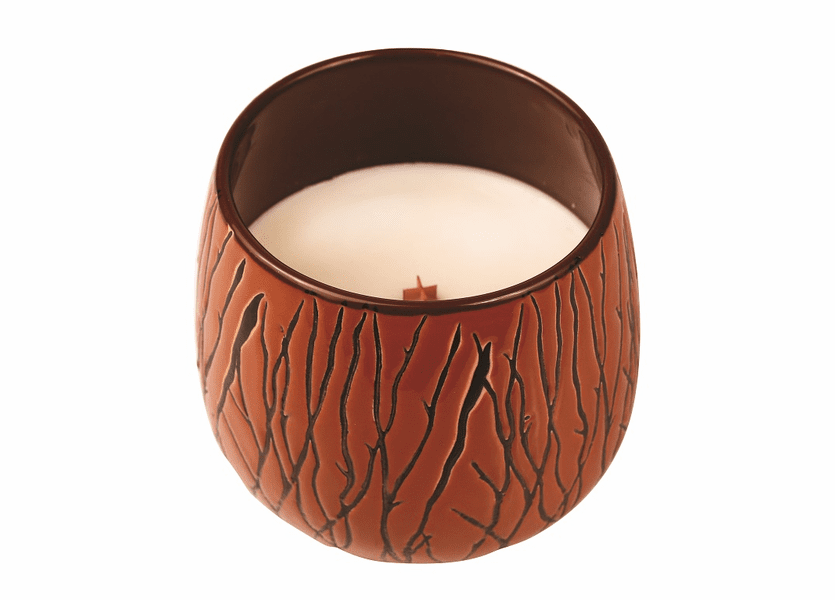 _DISCONTINUED - *Biscotti Tumbler Premium WoodWick Candle