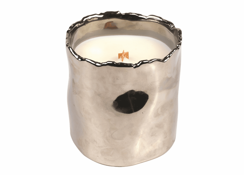 _DISCONTINUED - *Candy Cane Cupcake Holiday Shiny Silver Tumbler WoodWick Candle