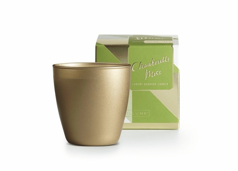 _DISCONTINUED - Chanterelle Moss Demi Boxed Glass Illume Candle