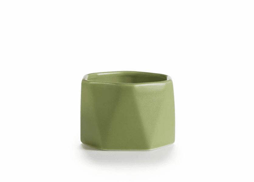 _DISCONTINUED - Chanterelle Moss Dylan Ceramic Illume Candle