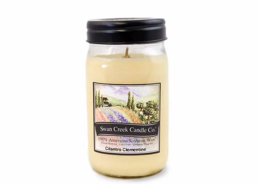 _DISCONTINUED - Cilantro Clementine 24 oz. Swan Creek Kitchen Pantry Jar Candle