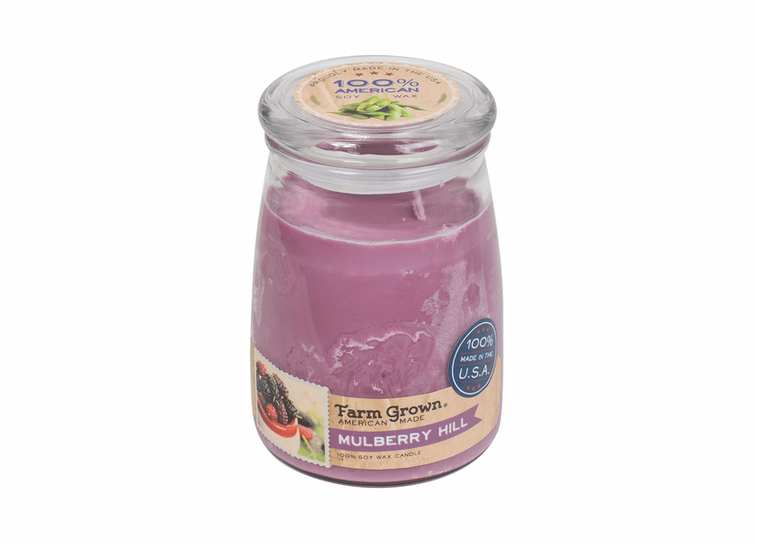 _DISCONTINUED - CLOSEOUT - Mulberry Hill 21 oz. Large Glass Farm Grown Candle