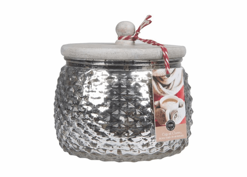 _DISCONTINUED - Cup of Cheer Holiday Jar Candle - Bridgewater