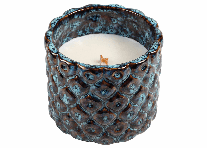 _DISCONTINUED - Dew Drops Peacock Tumbler WoodWick Candle