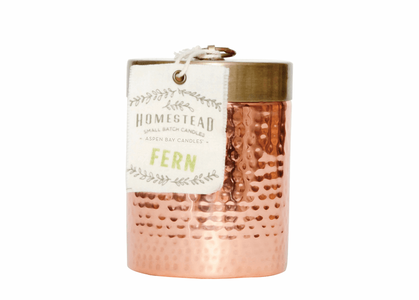 _DISCONTINUED - Fern 14 oz. Hammered Canister Candle  by Aspen Bay Candles