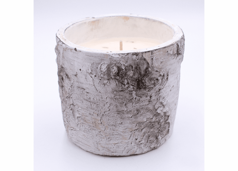 _DISCONTINUED - Fig and Cinnamon Stick White Woods Round Pot Swan Creek Candle