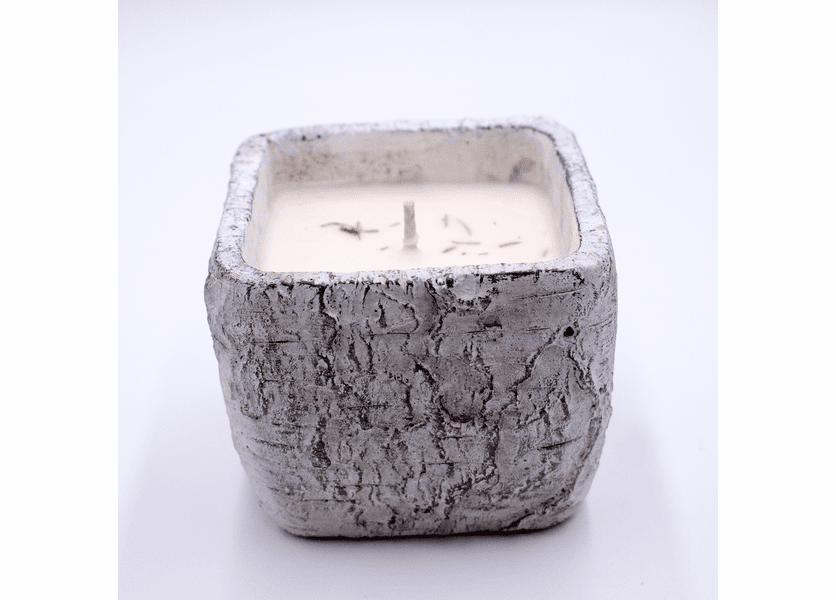 _DISCONTINUED - Fresh-Cut Christmas Tree White Woods Small Square Pot Swan Creek Candle