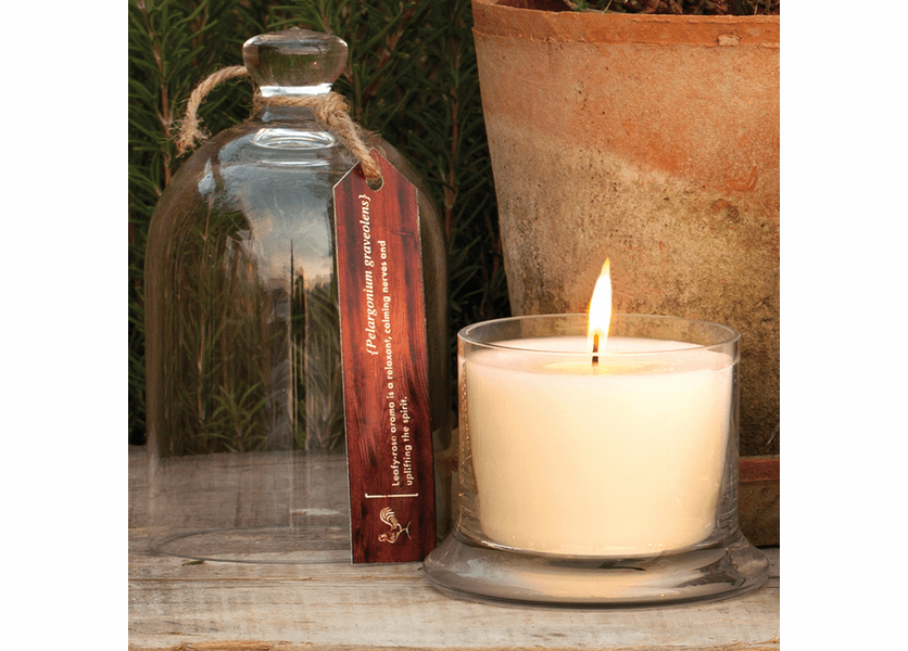 _DISCONTINUED - Geranium Bell Jar Candle by Park Hill Collection