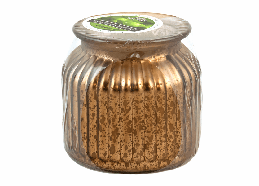 _DISCONTINUED - Gingerbread Gilded Glass Medium Jar Swan Creek Candle