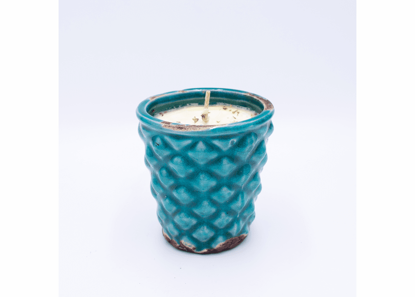 _DISCONTINUED_Home For The Holidays English Garden Hobnail Pot Swan Creek Candle