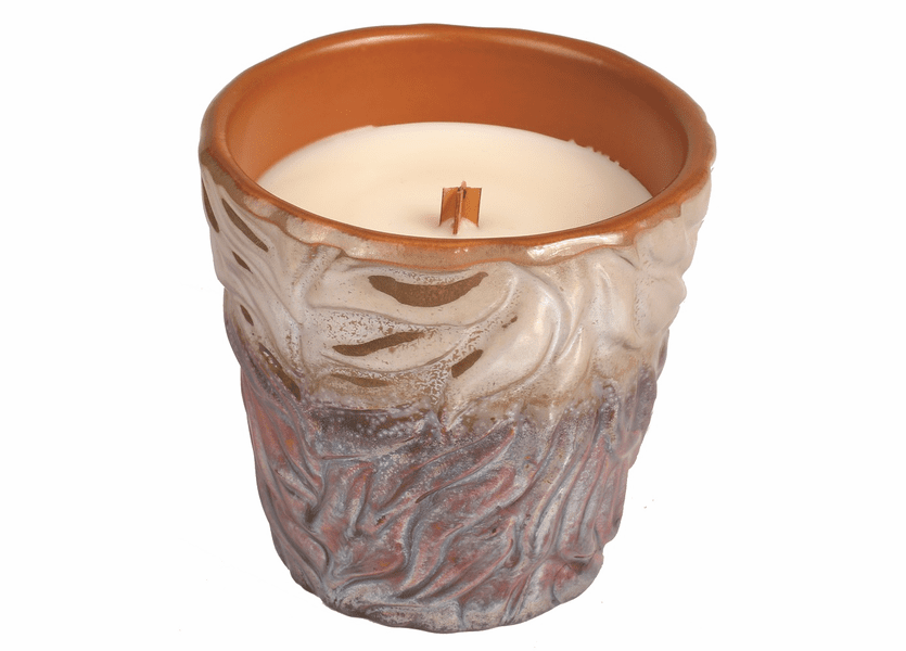 _DISCONTINUED - *Rum Raisin Brown Fall Tumbler WoodWick Candle