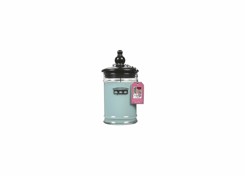 _DISCONTINUED - *Snow Day Large Jar Candle - Bridgewater