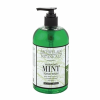 Morning Mint 17 oz. Hand Wash by Archipelago