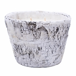 CLOSEOUT-Alpine Forest White Woods Pottery Birch Small Oval Swan Creek Candle | Swan Creek Candles Closeouts