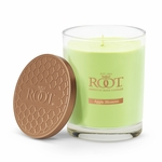 NEW! - Apple Blossom Hive Glass Candle by Root | New Releases By Root
