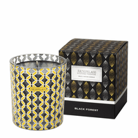 NEW! - Black Forest Tuck Box Holiday Gift Candle by Archipelago