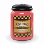 NEW! - Cactus Flower 26 oz. Large Jar Candle  by Candleberry | New Releases by Candleberry