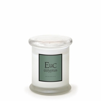 NEW! - Eucalyptus 8.6 oz. Frosted Jar Candle by Archipelago