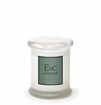 NEW! - Eucalyptus 8.6 oz. Frosted Jar Candle by Archipelago | Shop All Archipelago Candles