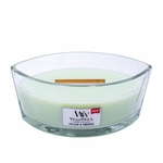 NEW! - Fig Leaf & Tuberose WoodWick Candle 16 oz. HearthWick Flame | HearthWick Ellipse Glass Candles