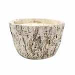 NEW! - Harvest Spice White Woods Bark Tapered Pot Swan Creek Candle | White Woods Pottery Collection