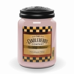 NEW! - Himalayan Mist 26 oz. Large Jar Candle  by Candleberry | New Releases by Candleberry