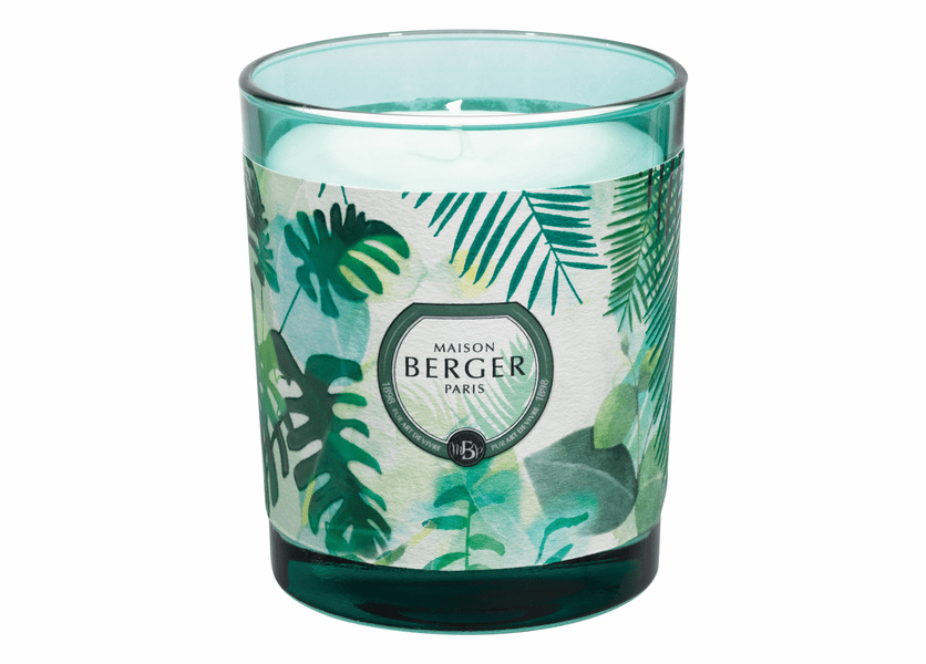 NEW! - Immersion Green Candle in Fresh Eucalyptus 240g - Maison Berger by Lampe Berger