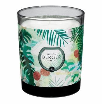 NEW! - Immersion Grey Candle in Lychee Paradise 240g - Maison Berger by Lampe Berger