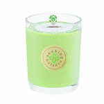 NEW! - Relieve (Eucalyptus Menthol) Seeking Balance 15 oz. Large Spa Candle by Root | Seeking Balance Spa Candles by Root