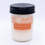 CLOSEOUT - Roasted Pumpkin Seeds 12 oz. Swan Creek Autumn Traditions Jar Candle   Swan Creek Candles Closeouts
