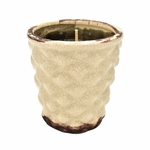 NEW! - Spiked Hummingbird Cake English Garden Hobnail Pot Swan Creek Candle | English Garden Collection