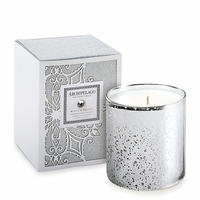 NEW! - Winter Frost Boxed Candle by Archipelago