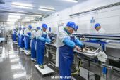 MEAT-POULTRY-SEAFOOD PROCESSING EPOXY FLOORING