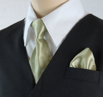 Boys Clip-on Tie and Pocket Square (KTC600-Sage)