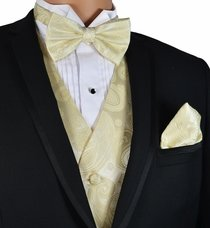 Champagne Paisley Vest and Bow Tie Set by Paul Malone