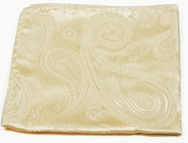 Champagne Silk Pocket Square (H442)