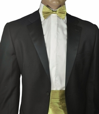 Solid New Wheat Silk Cummerbund and Bow Tie Set