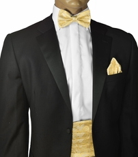Yellow Paisley Cummerbund and Bow Tie Set