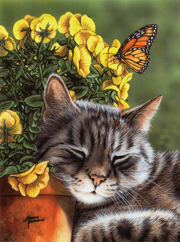 afternoon nap 1000pc