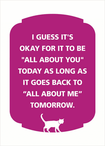 All About You Cat